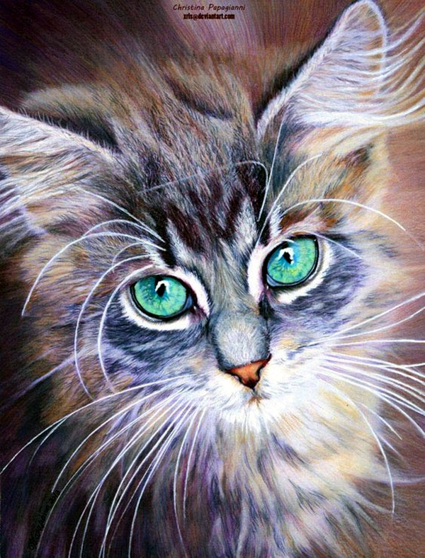 color pencil drawing Examples (28)