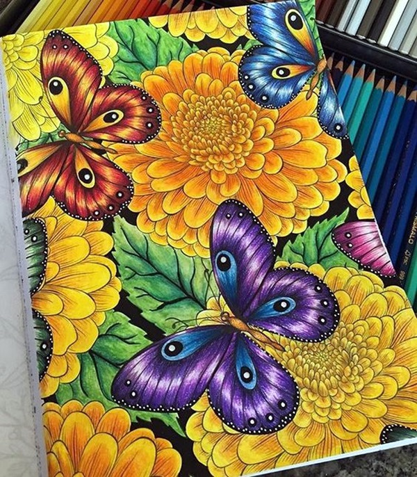 color pencil drawing Examples (45)