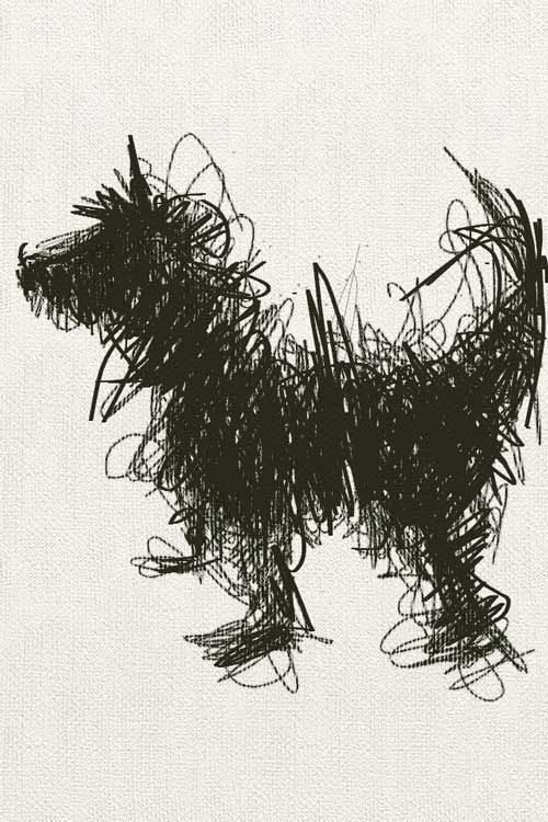 Line Drawing Artist Research : Scribble art to make your home and office look awesome