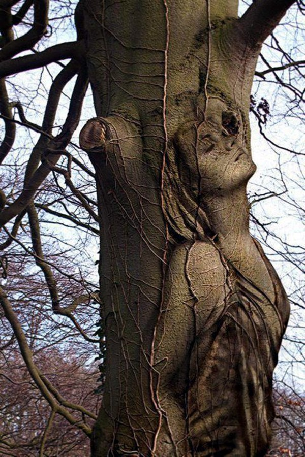 Exceptional Examples of Tree Carving Art (3)