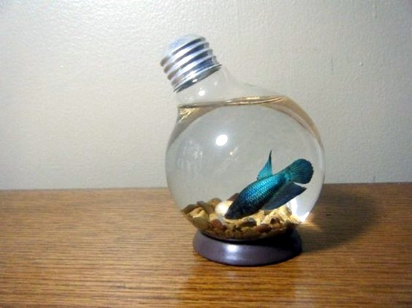 Original Light Bulb Aquarium Decor Ideas (15)