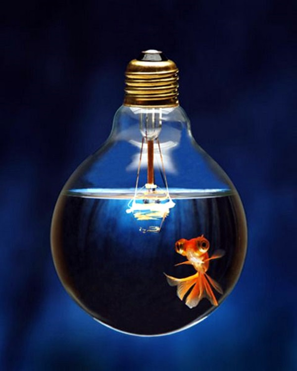 Original Light Bulb Aquarium Decor Ideas (19)