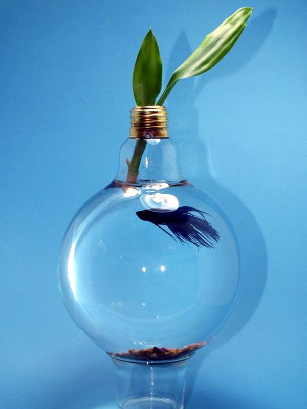 Original Light Bulb Aquarium Decor Ideas (24)