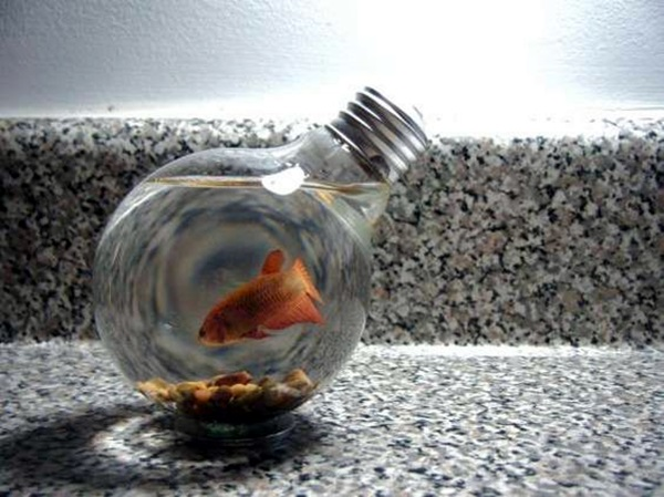 Original Light Bulb Aquarium Decor Ideas (25)