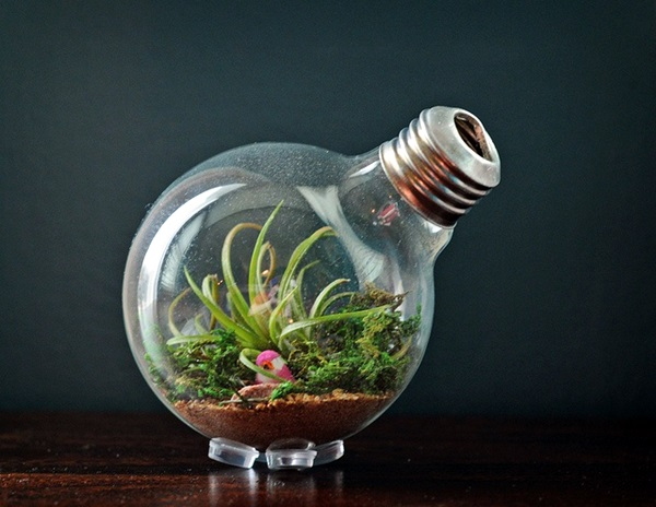 Original Light Bulb Aquarium Decor Ideas (30)