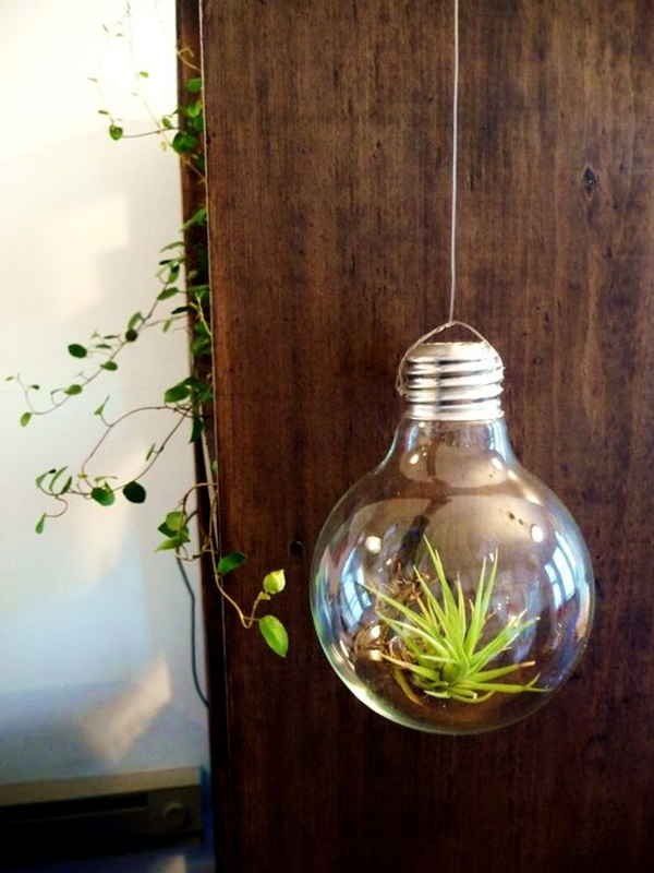Original Light Bulb Aquarium Decor Ideas (31)