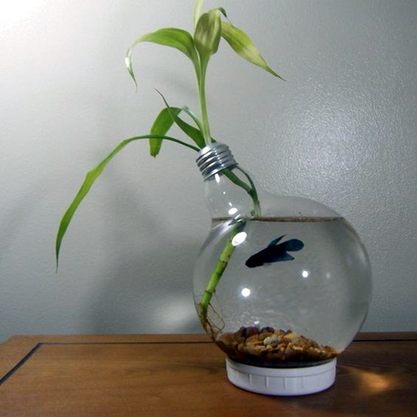 Original Light Bulb Aquarium Decor Ideas (4)