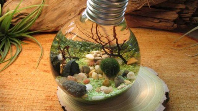 Original Light Bulb Aquarium Decor Ideas