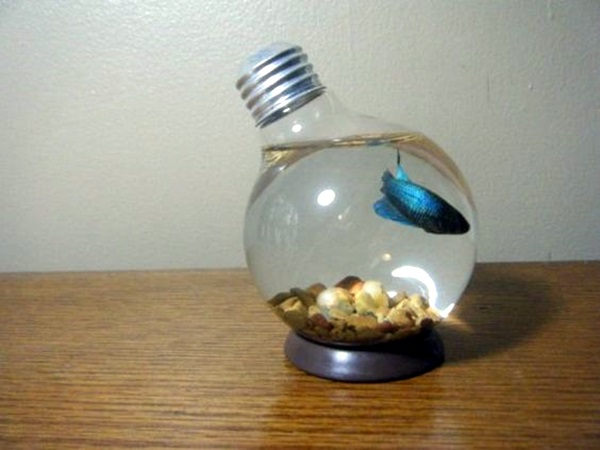 Original Light Bulb Aquarium Decor Ideas (7)