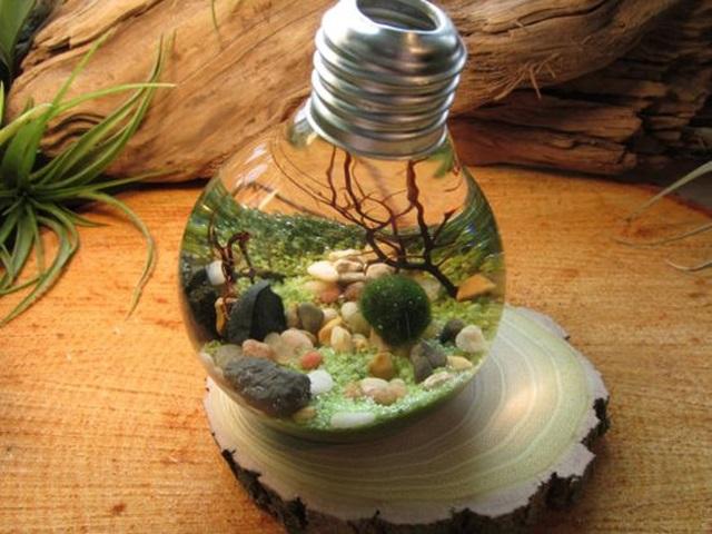 Lightbulb Idea: 40 Original Light Bulb Aquarium Decor Ideas
