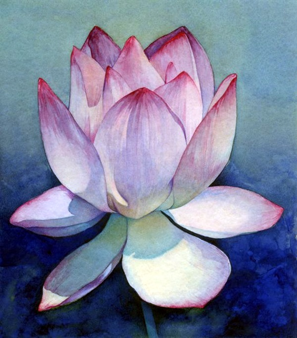 Peaceful Lotus Flower Painting Ideas (10)