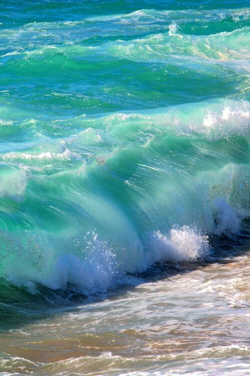 sea photography 24