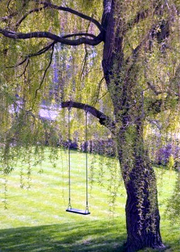 DIY Tree Swing Ideas For More Family Time (25)