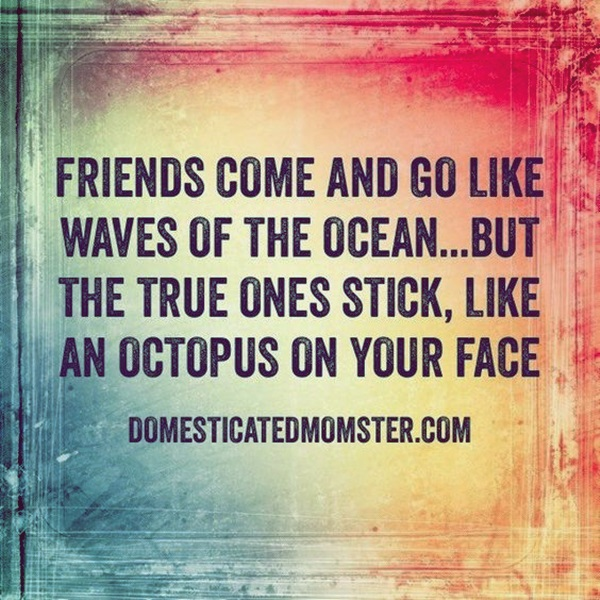Dumbass Best Friends Quotes With Pictures (14)