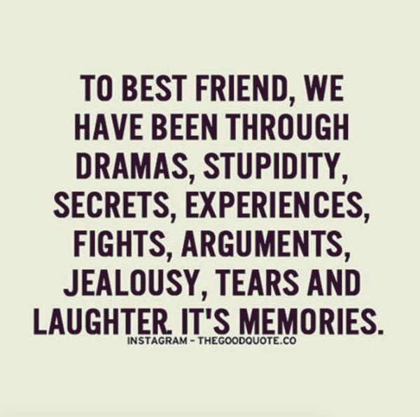 Best Quotes Jealousy Friendship: 40 Dumbass Best Friends Quotes With Pictures