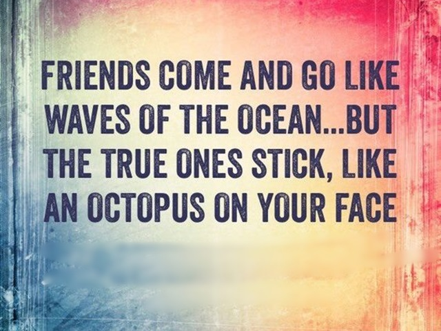 Friends Come And Go Like Seasons Quotes : Dumbass best friends quotes with pictures