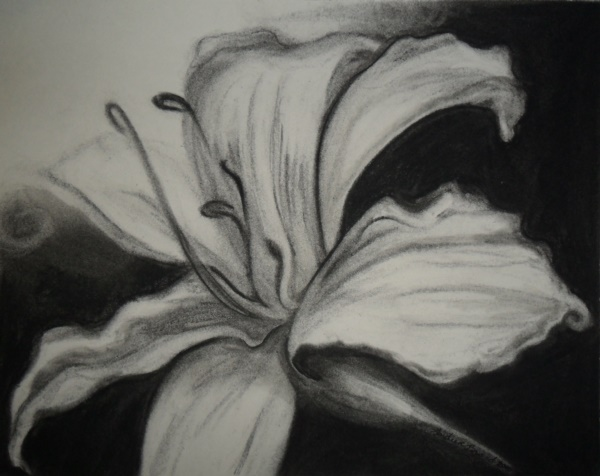 beautiful-illustrations-of-charcoal-painting0041