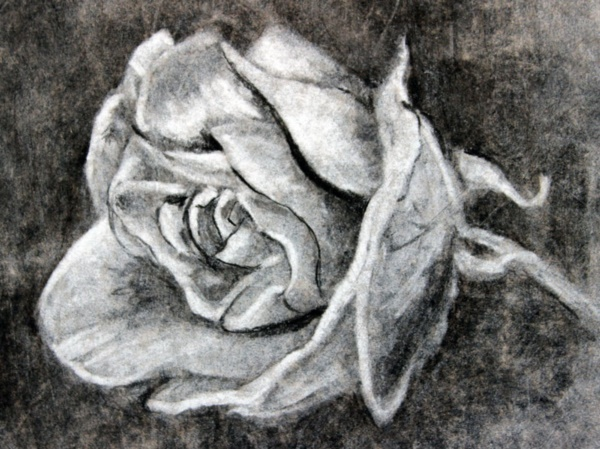 beautiful-illustrations-of-charcoal-painting0071