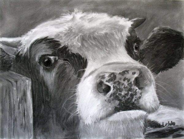 beautiful-illustrations-of-charcoal-painting0151