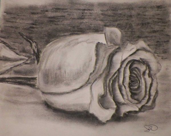 beautiful-illustrations-of-charcoal-painting0241
