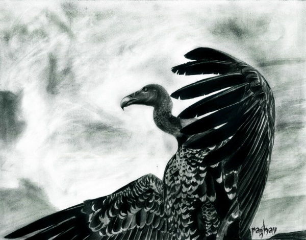 beautiful-illustrations-of-charcoal-painting0281