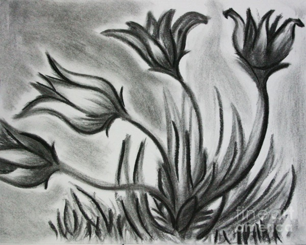 beautiful-illustrations-of-charcoal-painting0291