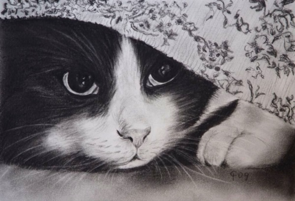 beautiful-illustrations-of-charcoal-painting0381
