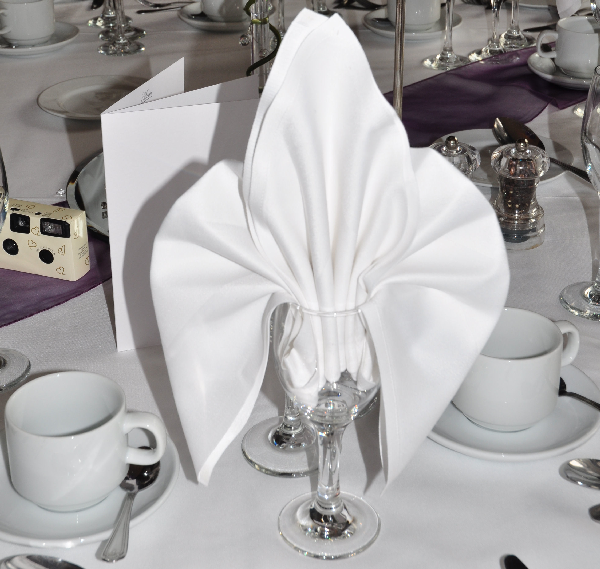 40 Most Creative Table Napkin Folding Ideas To Practice