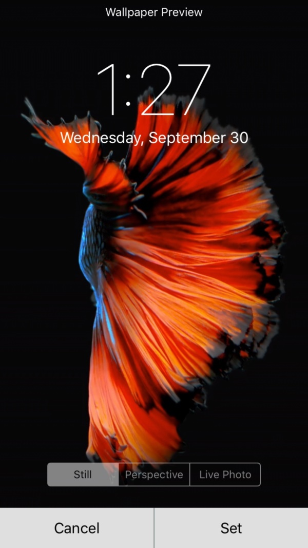 how to make your live wallpaper move on iphone 6s
