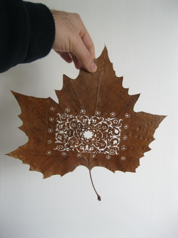mildly-interesting-leaf-art-installations0001