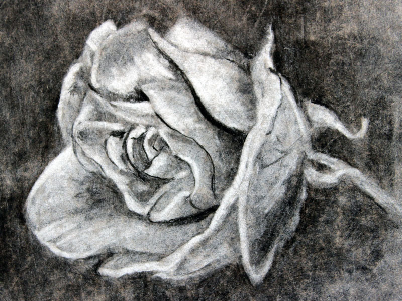 charcoal-drawing-for-beginners-7