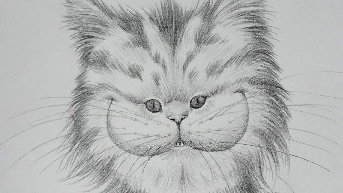 Cat face ac8f146ac26d4f79aea1276dbbde954a