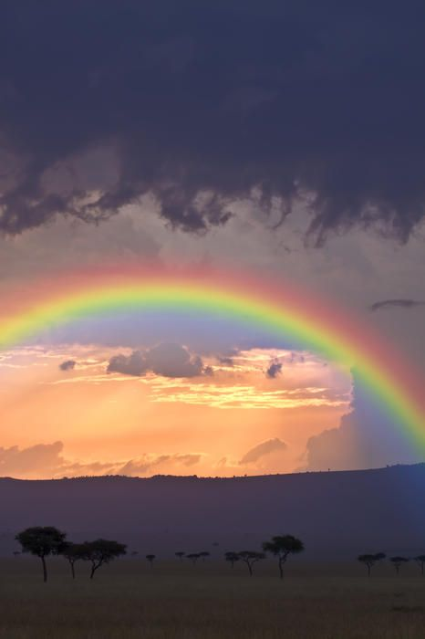 rainbow-photography-12