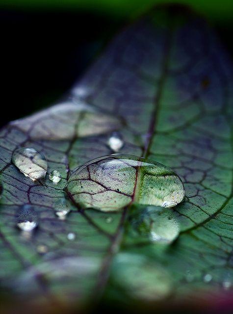 waterdrop-art-14