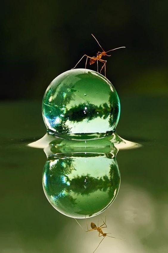 waterdrop-art-15