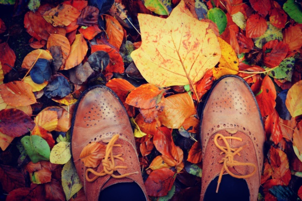 magical-fall-photography-ideas-to-try-this-year0041