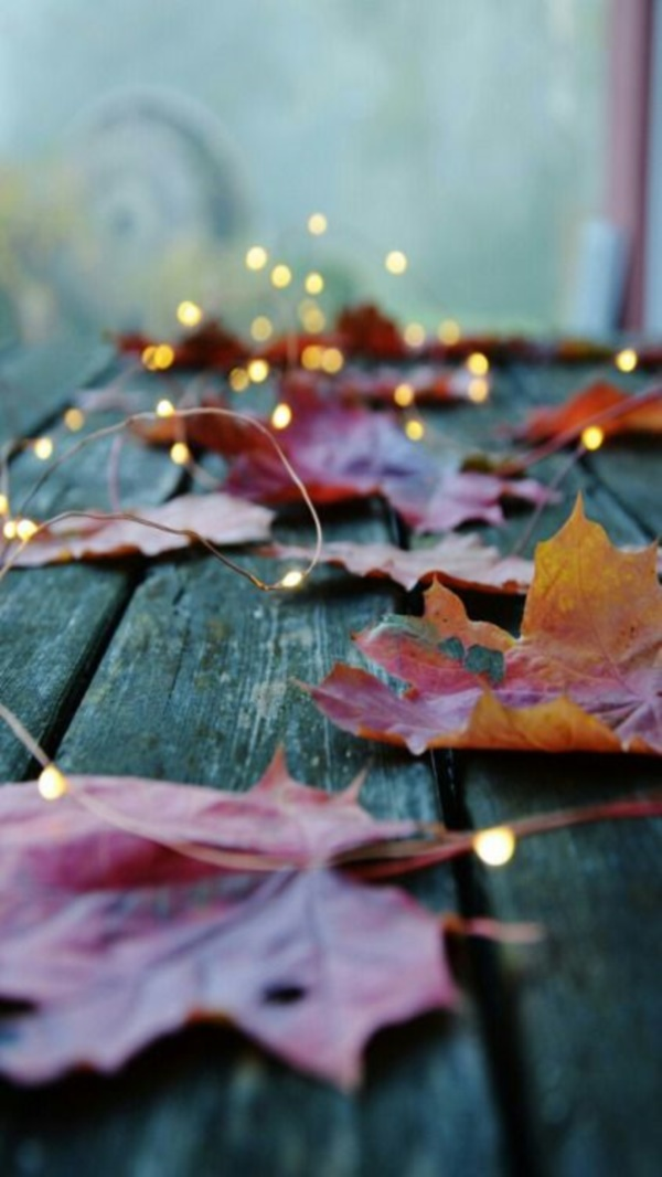 magical-fall-photography-ideas-to-try-this-year0071