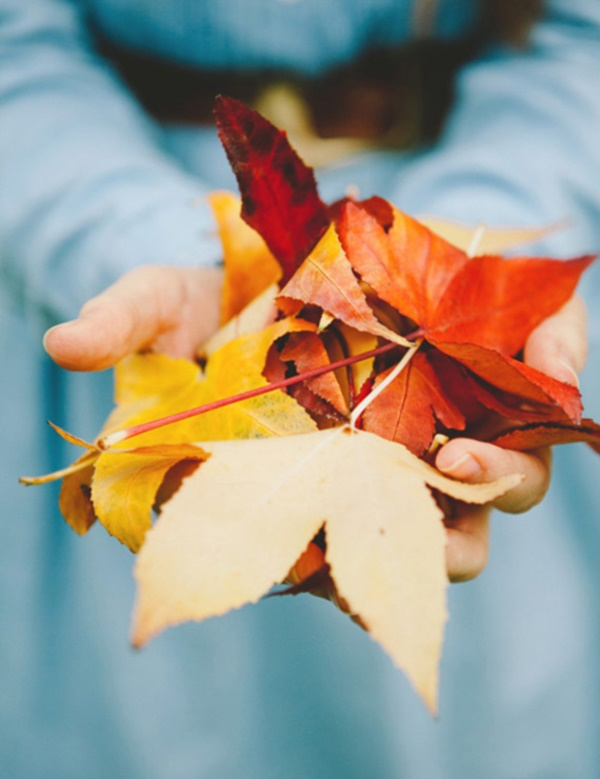 magical-fall-photography-ideas-to-try-this-year0141