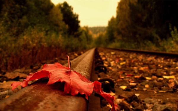 magical-fall-photography-ideas-to-try-this-year0331