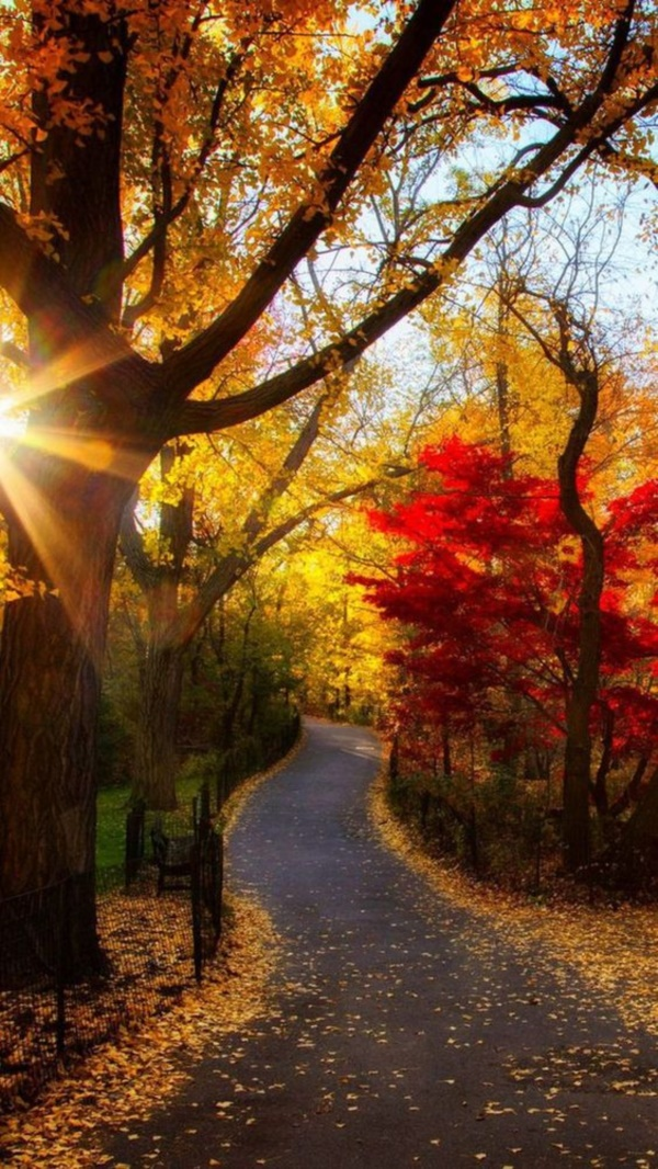magical-fall-photography-ideas-to-try-this-year0341