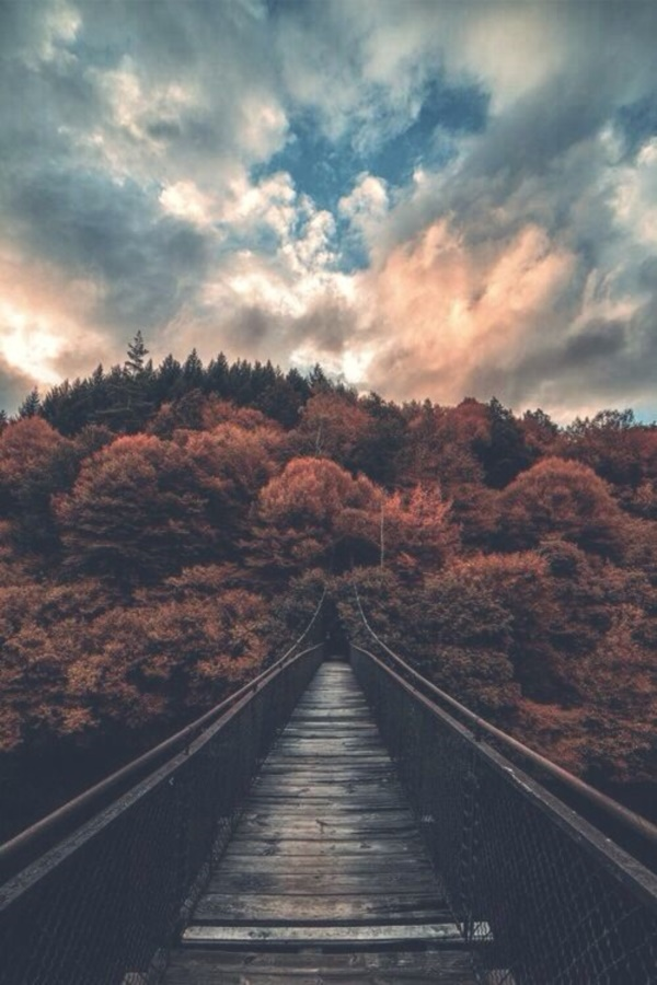 magical-fall-photography-ideas-to-try-this-year0381