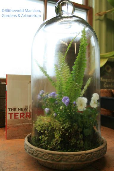 bell-jar-ideas-22