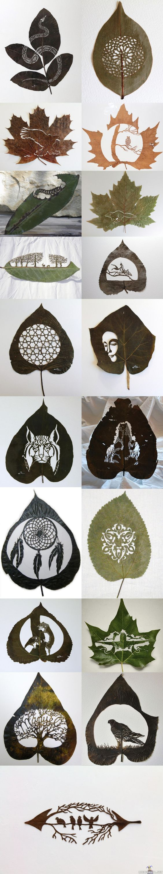 leaf-cutting-art-15