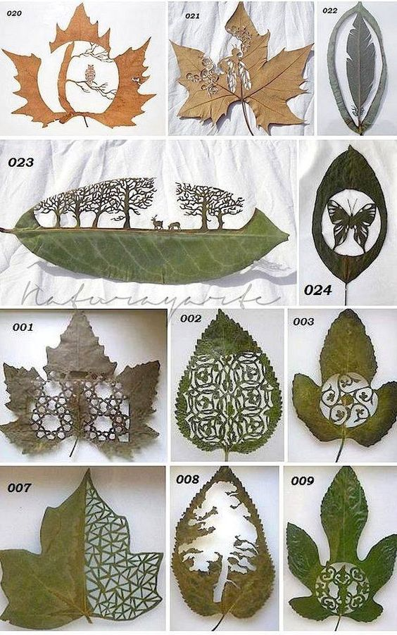 leaf-cutting-art-16