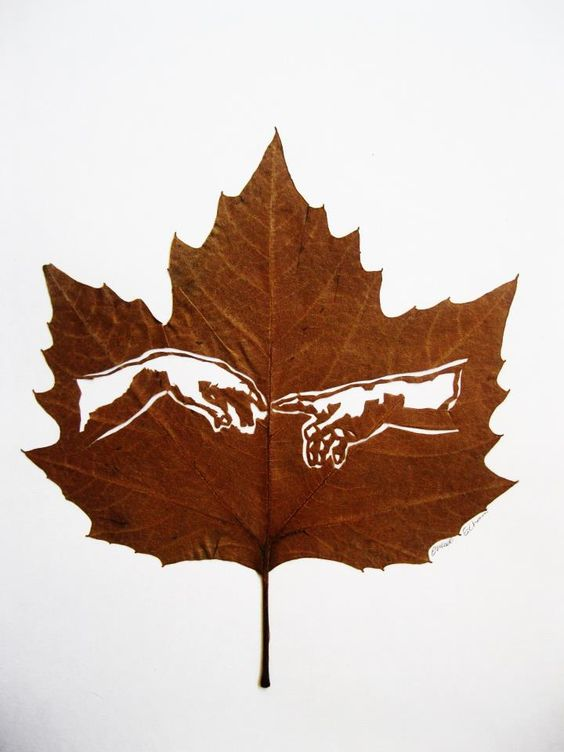 leaf-cutting-art-19