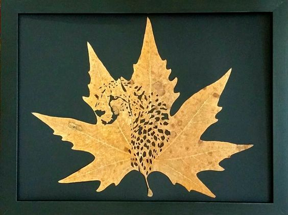 leaf-cutting-art-22