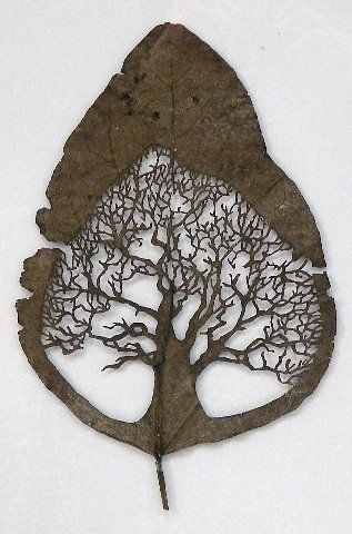 leaf-cutting-art-3