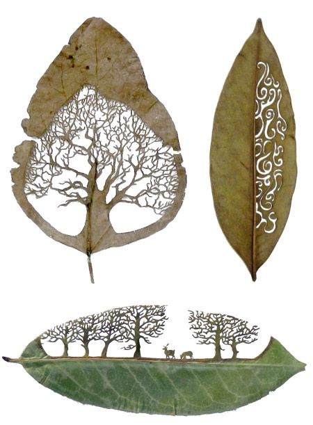 leaf-cutting-art-4