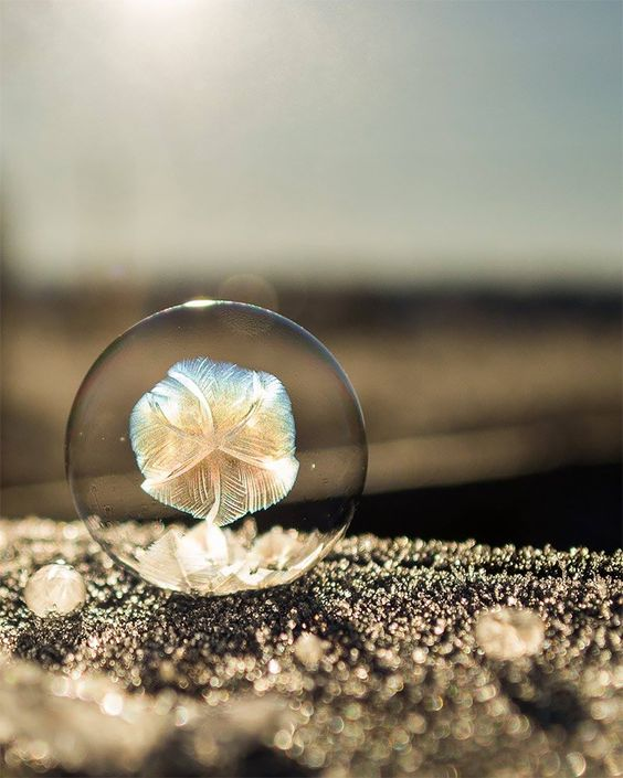 soap-bubble-art-7