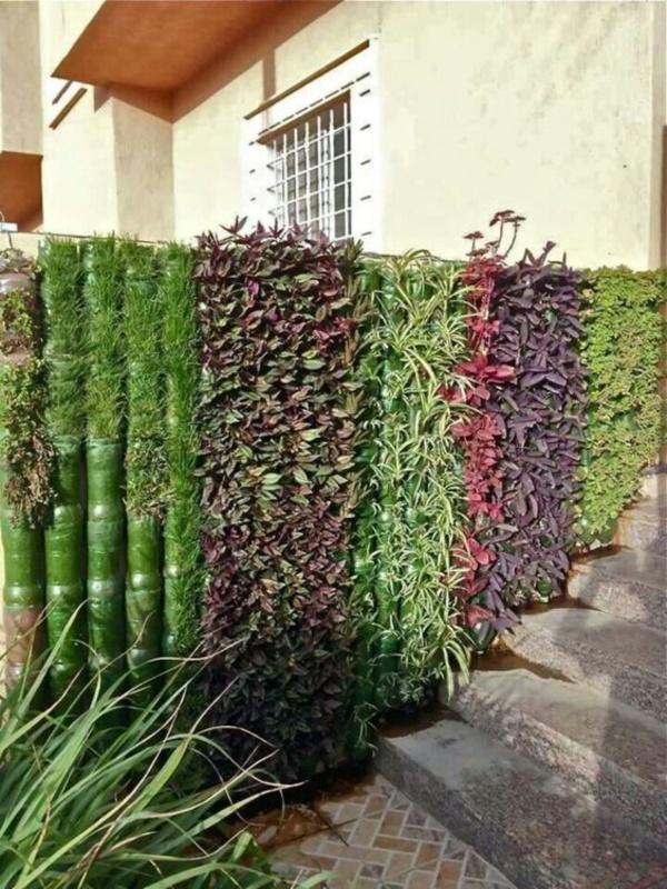 40 brilliant plastic bottle garden ideas for Garden designs for medium gardens